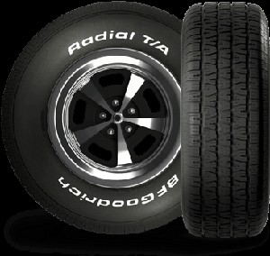 P255/60R15 BFGoodrich Radial T/A Tire (102S)
